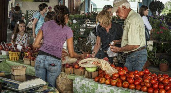 Robert G. Shaw Piedmont Triad Farmers Market