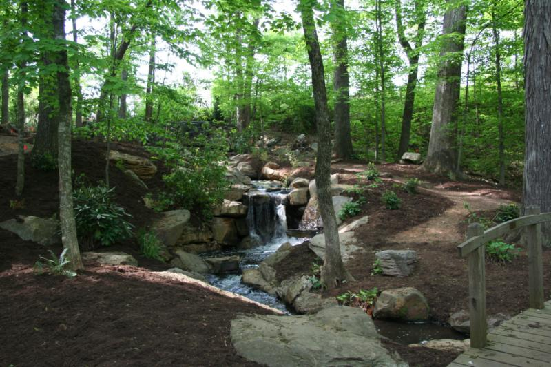 Bog Garden | Greensboro Convention and Visitors Bureau