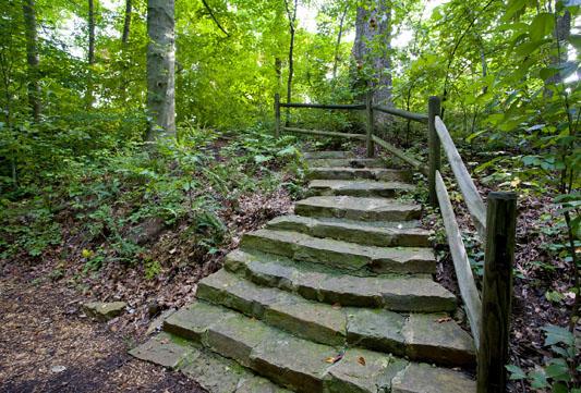 Bog garden greensboro convention and visitors bureau for Landscaping rocks greensboro nc
