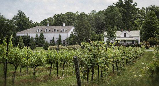 Stonefield Cellars Winery
