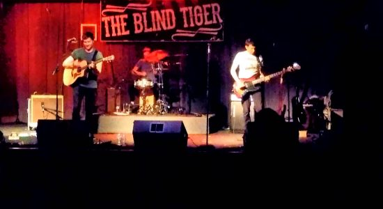 Blind Tiger, The